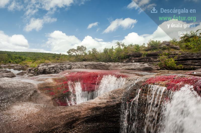 Caño Cristales, sector Los Ochos (Colombia)  / Fotografía por Mario Carvajal