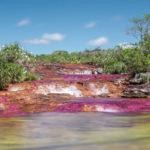 Caño Cristalitos en Colombia  / Fotografía por Giovanni Bermudez
